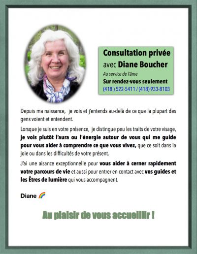 0- Consultations avec Diane Boucher presentation