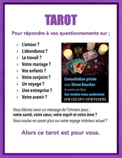 3- Consultations avec Diane Boucher Tarot